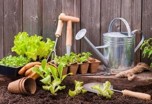Miejski ogród - narzędzia