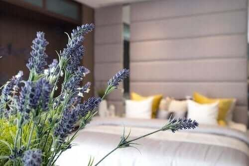 Dobra higiena snu – 10 kroków do sukcesu