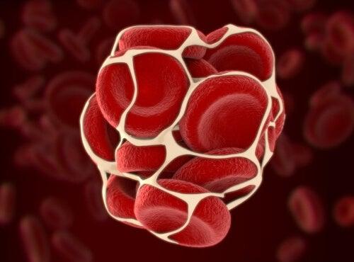 Krzepnięcie krwi
