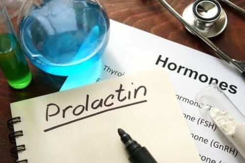 Prolaktyna - czym jest i jak działa?