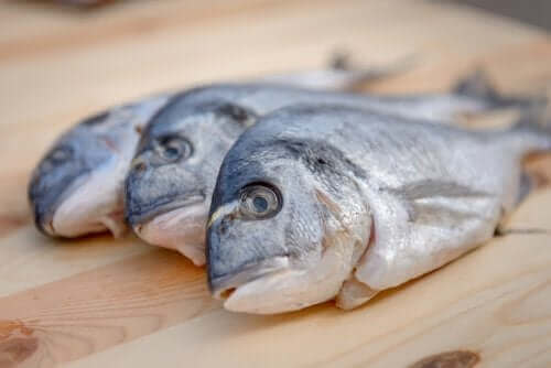 Rtęć w rybach – czy jest się czego bać?