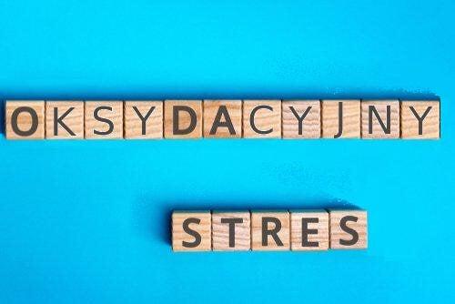 Stres oksydacyjny - na czym polega to zjawisko?