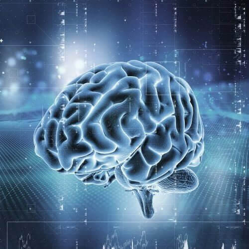 System nagradzania w mózgu: na jakiej zasadzie on działa?