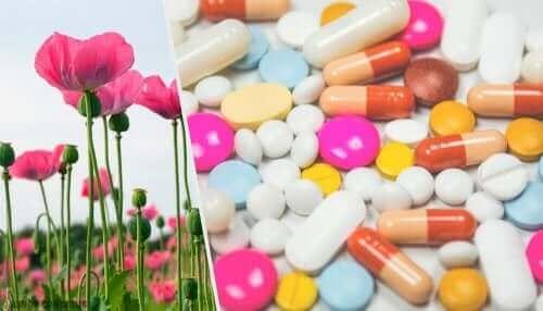 Maki i tabletki