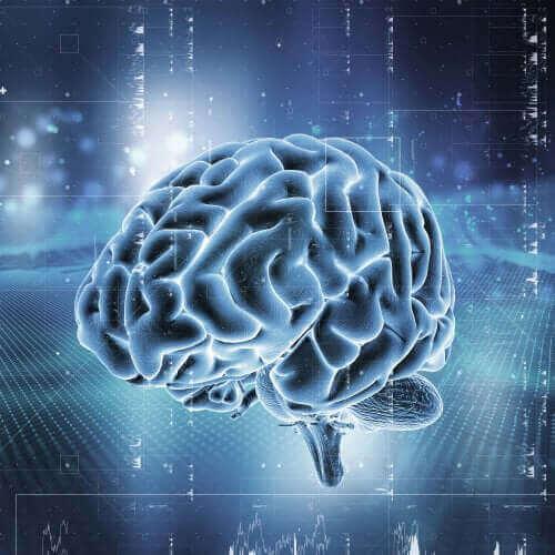 Podświetlony mózg