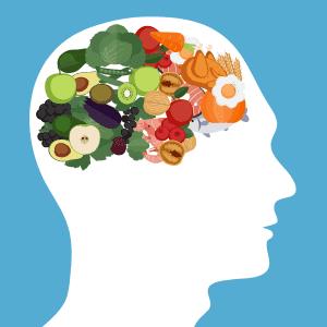 Rysunek produktów spożywczych w mózgu