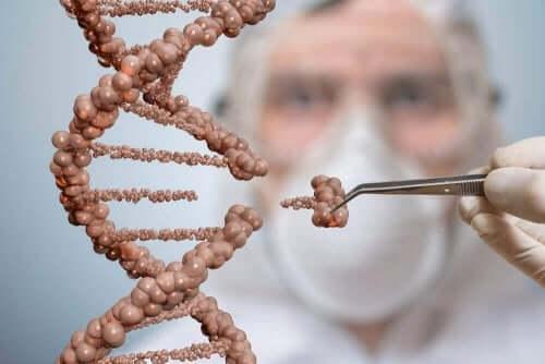 Cząsteczki DNA