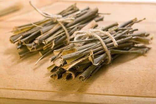 Kora wierzbowa - rośliny lecznicze stosowane w RZS