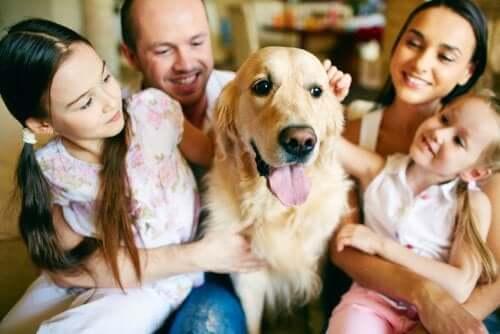 Rodzina głaszcząca psa