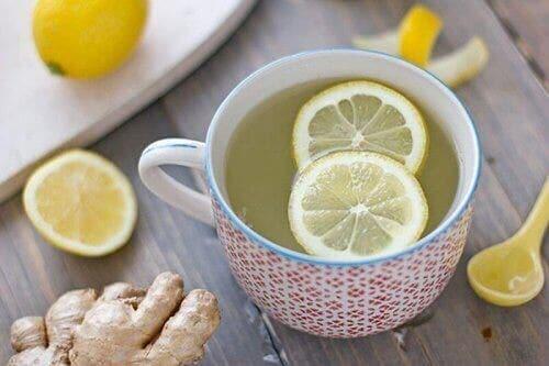 Woda smakowa z owocami: z cytryną i imbirem