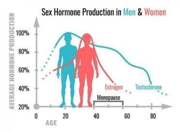 hormony, aby zwiększyć penisa