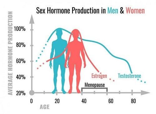 Hormony płciowe: jaka jest ich funkcja?