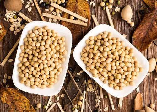 Białko sojowe: czy wpływa korzystnie na Twoje zdrowie?