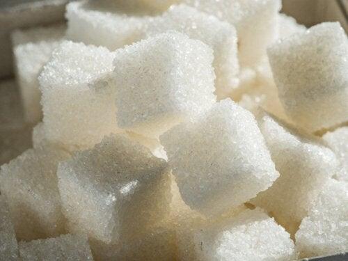 Kostki cukru a zdrowie mózgu