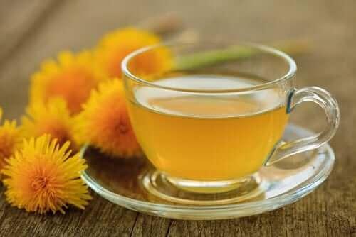 Herbata z mniszka na obniżenie kwasu moczowego