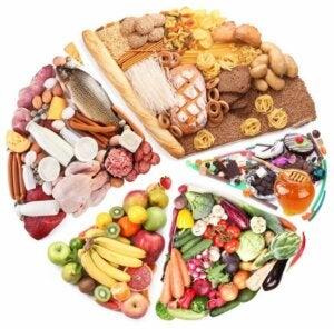 Składniki odżywcze, niezbędne w Twojej diecie