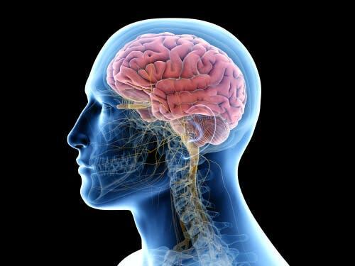 Zapalenie mózgu - grafika neuro