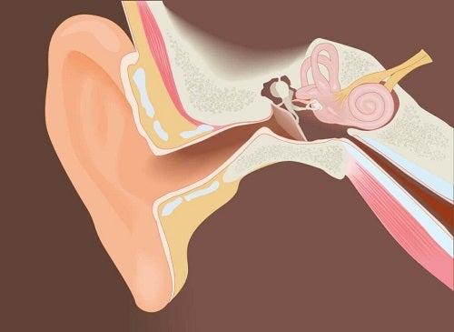 Egzostozy: usuwanie z kanału słuchowego zewnętrznego