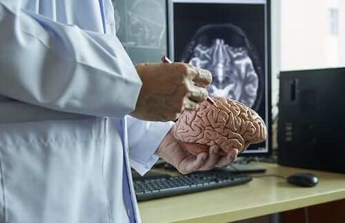 Lekarz z mózgiem