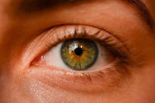 Cukrzycowe problemy z oczami – co musisz wiedzieć?