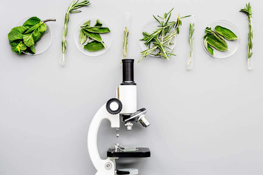 Produkty transgeniczne otrzymywane są z organizmów zmodyfikowanych genetycznie.