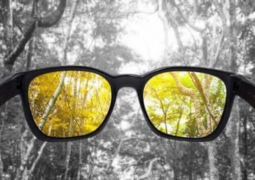 Ślepota barw - przyczyny i leczenie