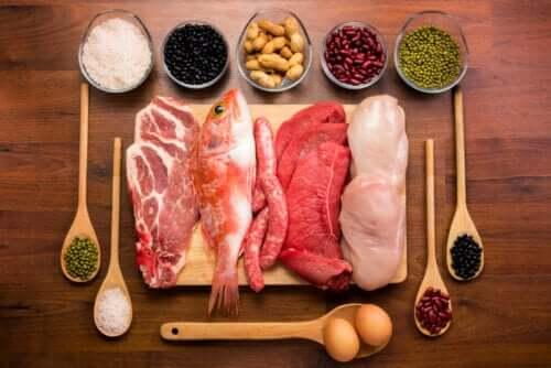 Białka - jak działają i jaka jest ich funkcja w organizmie?