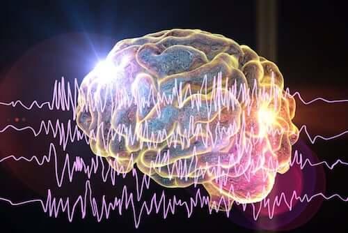 EEG mózgu