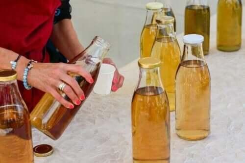 Herbata kombucha: charakterystyka i ryzyko
