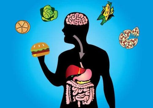 Elastyczność metaboliczna