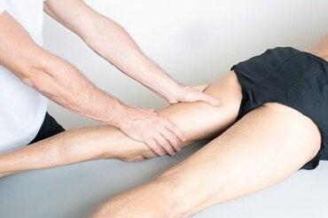 Tendinopatia mięśni przywodzicieli uda: objawy i leczenie
