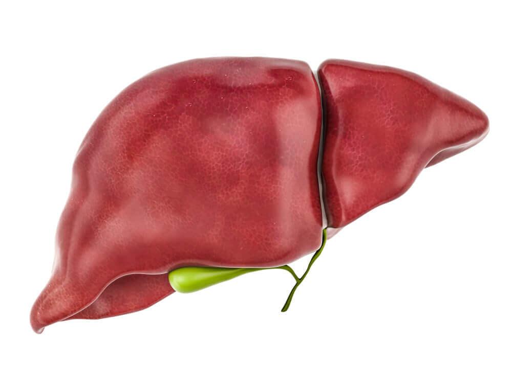 Wątroba odpowiada za usuwanie toksyn z organizmu.
