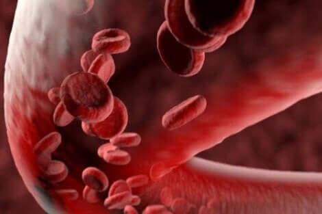 histamina reguluje działanie układu sercowo-naczyniowego