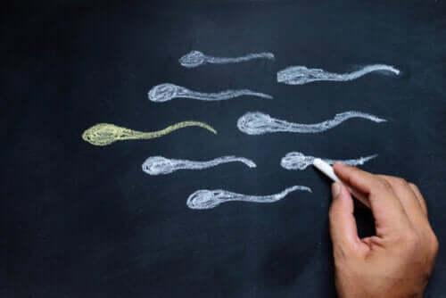 Zwiększenie poziomu testosteronu - 6 skutecznych sposobów