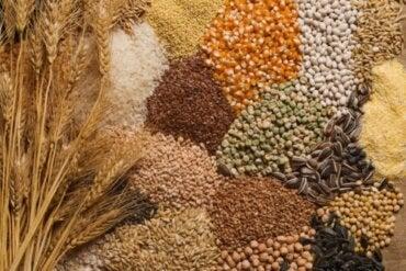 Nasiona w diecie - 3 porady