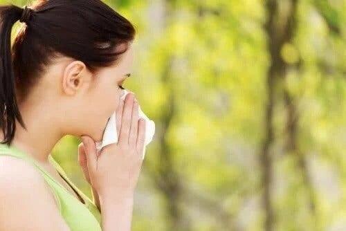 Alergia na pyłki – 5 najlepszych naturalnych środków