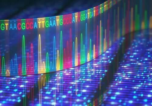 Przyczyną powstawania guzów są często czynniki genetyczne.