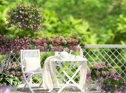 Ogród - pomysł na tarasy