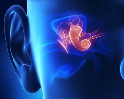 Organ słuchu - głuchota przedjęzykowa