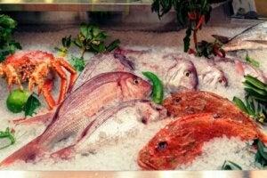 Ryby których nie należy jeść - poznaj powody i niebezpieczne gatunki