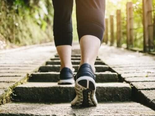 Czy spacerowanie po jedzeniu jest zdrowe?