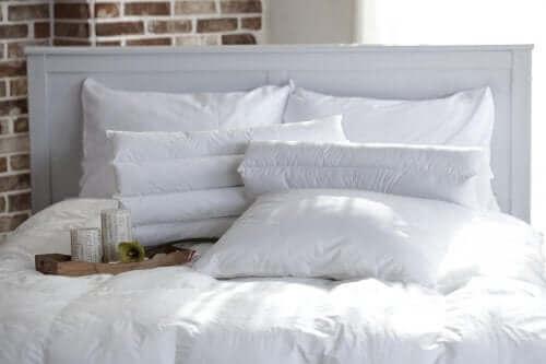 Alergia na roztocza a sypialnia