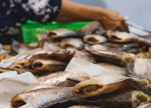 Zatrucie rybami: poznaj jego rodzaje
