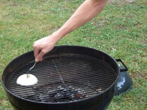 Czyszczenie grilla cebulą