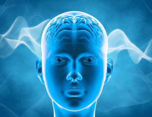 Chemio-mózg - na czym polega to zjawisko?