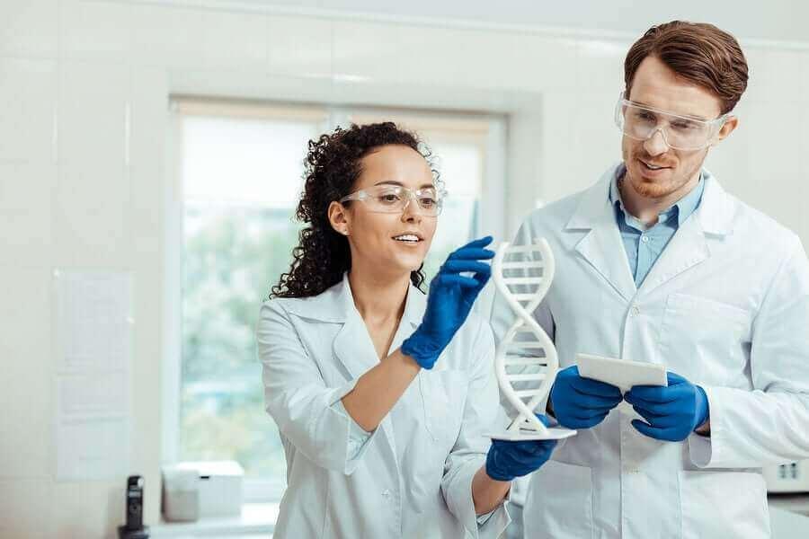 Naukowcy badający DNA
