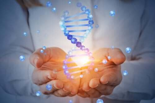 Na czym polegał projekt poznania ludzkiego genomu?