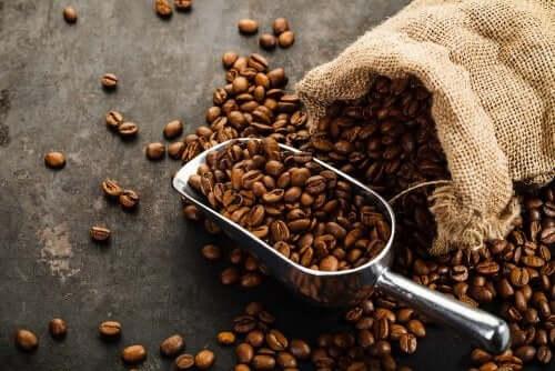 Ziarna kawy - akrylamid w żywności