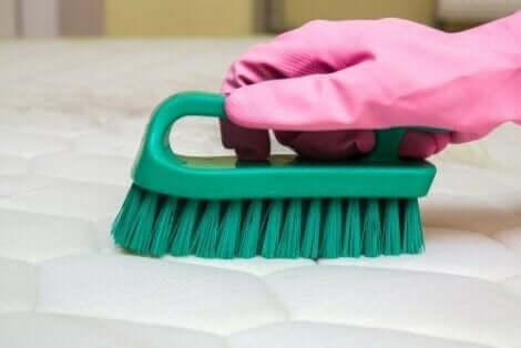 Do czyszczenia używaj rękawic