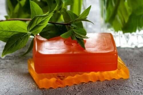 Mydło z papai - zastosowania, właściwości i przeciwwskazania